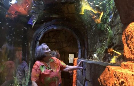 Sea Life Aquarium and Rain Forest Cafe Outing